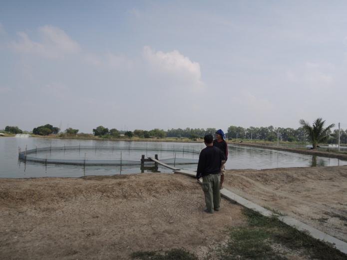 ブンマー養殖池